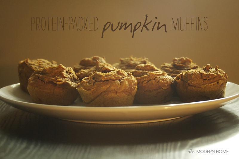 high-protein pumpkin muffins